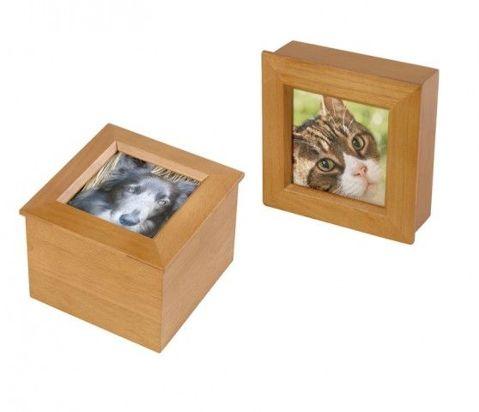 UFB1 Foto Box